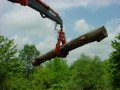 "HC60-A-3, A compact log and pulp grapple (60"" opening) handling logs."